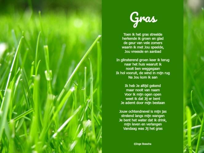 O My Grass