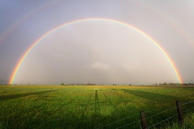 regenboog als teken van verbinding en trouw