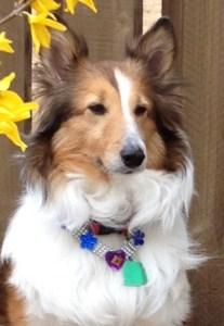 Sasha 3-20-16 posing for spring CROPPED