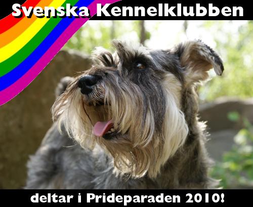 p100720_SKK_prideparad2010.jpg
