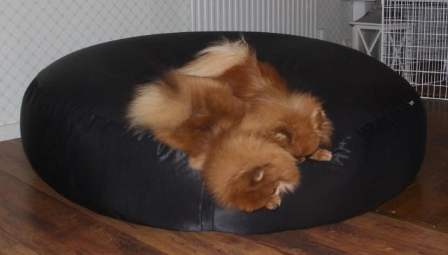 Sängpuck1