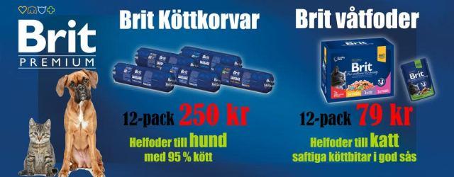 vetzoo6666