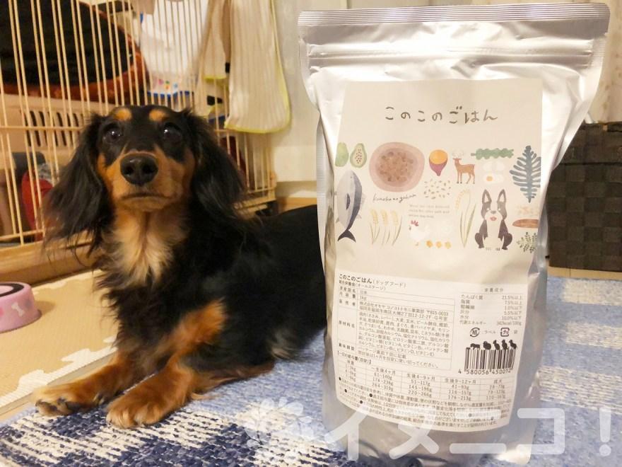 このこのごはんを実際に試した愛犬の口コミ【原材料、成分も調査】