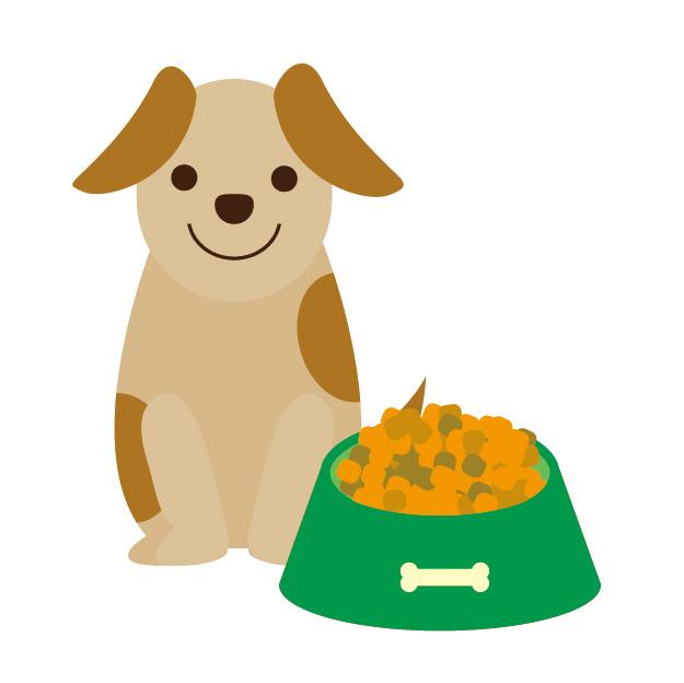 愛犬が教えてくれたドッグフードのおすすめ6コ。【選び方も解説】