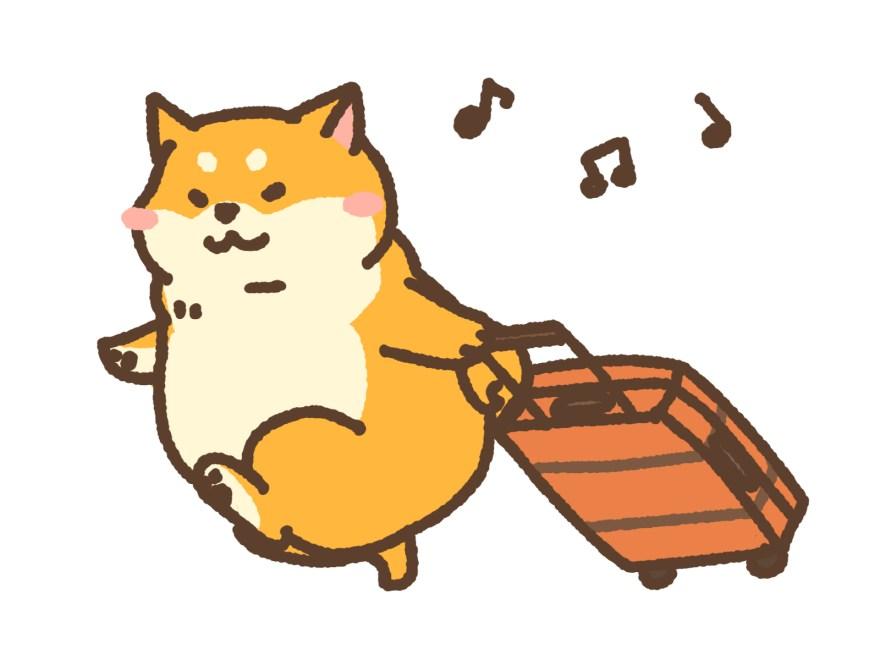 犬と旅行に行くときの持ち物は?「いつもどおり過ごせる」が基準です