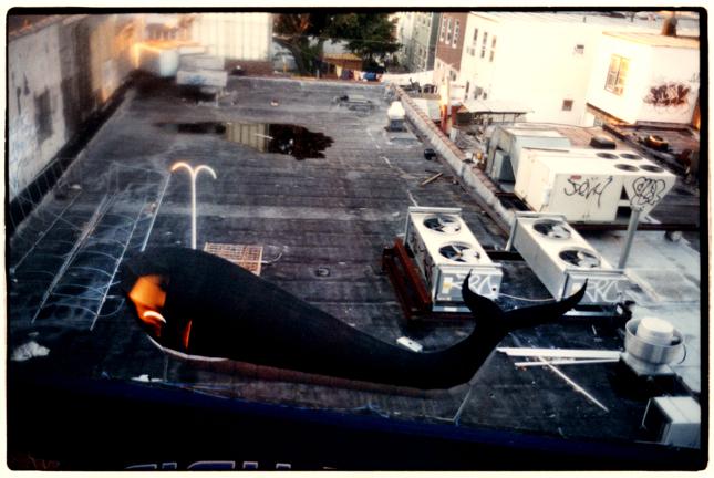 whale over brooklyn