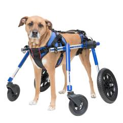 Wheel Chairs For Dogs Vintage Folding Dog Wheelchair Of 2019 Products Handicapped Disabled Pets Wheelchairs