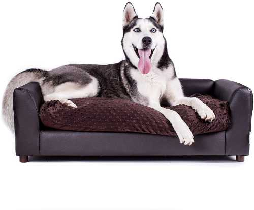 How to Choose the Best Dog Beds