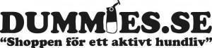www.dummies.se