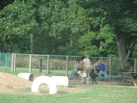 千葉県立  北総花の丘公園ドッグラン