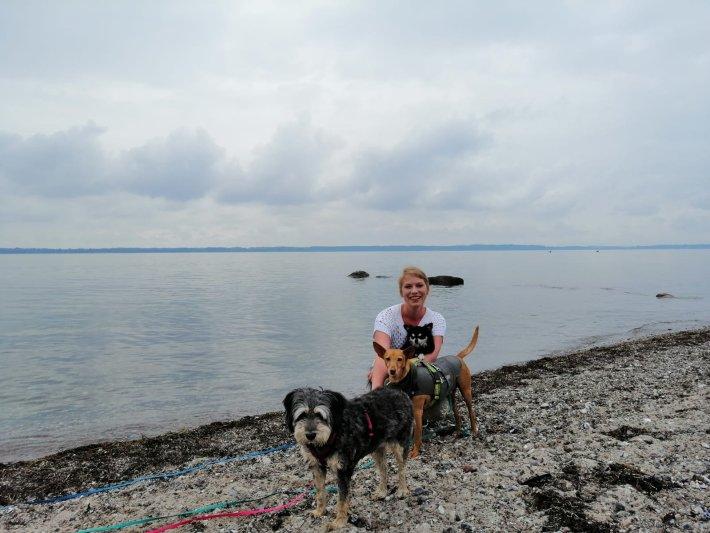 nadine waizenhöfer-kledwig hundetrainer buchenberg dogs-human-friends