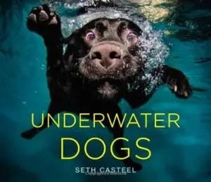 zemūdens suņu grāmata