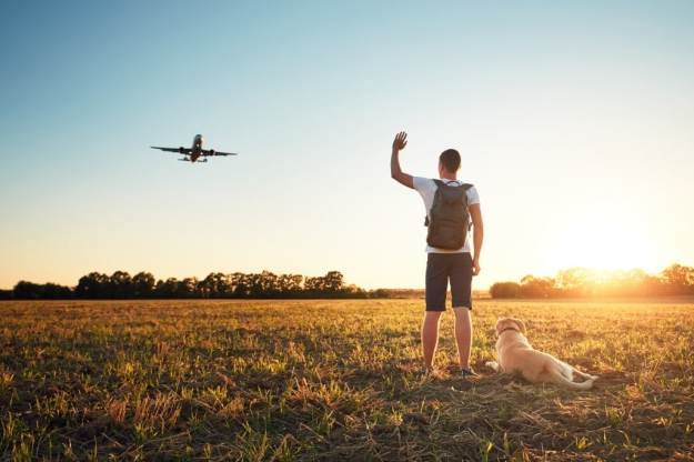 Tips to Fly with Your Dog