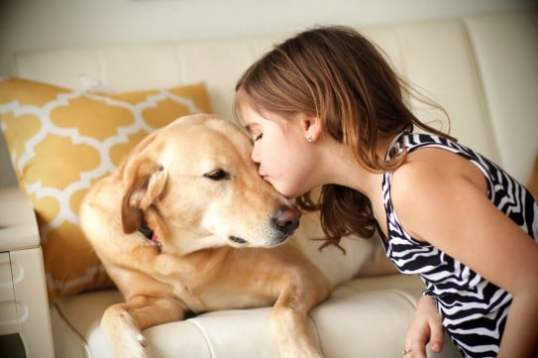 Top 10 dog breeds for families and kids