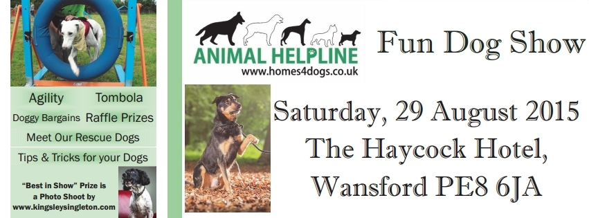 Fundraising at Wansford Dog Show