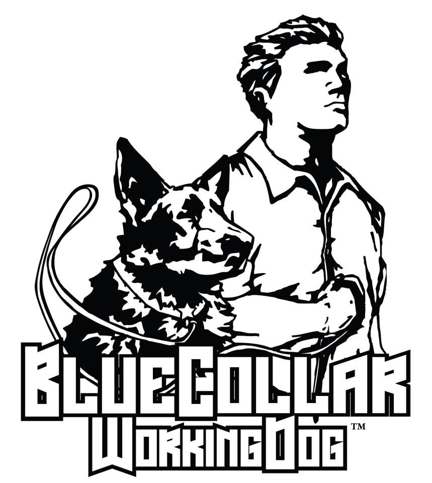 Pin Police-k9-coloring-page on Pinterest