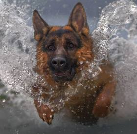 GSD through water