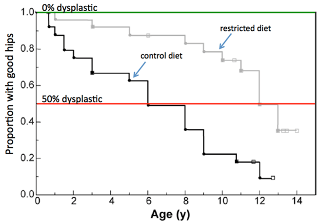 Age to Weight Factors for Hip Dysplasia