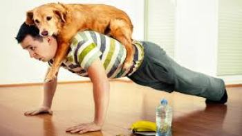 Exercise you and your dog