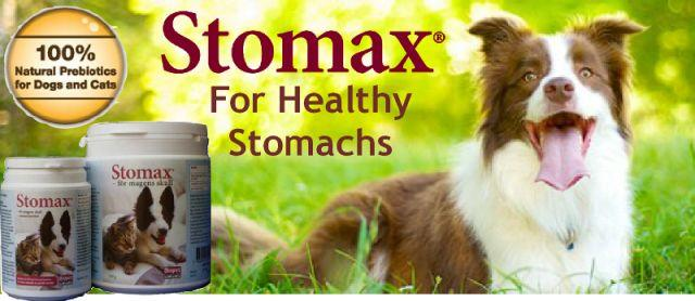 Stomax for health stomachs Web