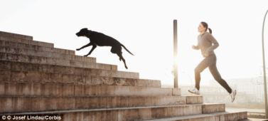 dog-and-girl-running-up-stairs