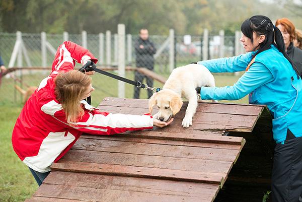 Kutya-ovi-17.10.23.-112