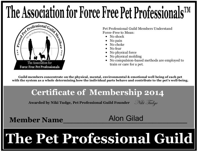 ppg_Certificate