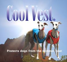 Cooling Vests for Dogs
