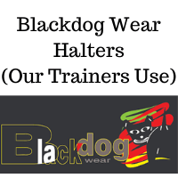 Blackdog Halters - Our Trainers Use