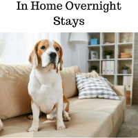 In Home Overnight Stays