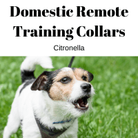 Domestic Remote Training Collars