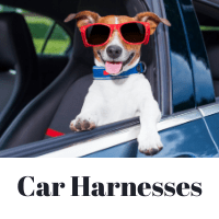 Car Harnesses
