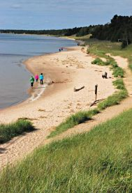 Whitefish Dunes State Park Beach, Door County, Wisconsin