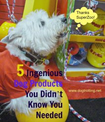 5 dog products