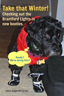 brantford-lights-victor-in-booties