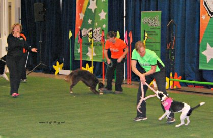 Canadian Pet Expo - Woof Jocks www.dogtrotting.net