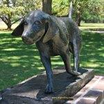 dog sculpture at Brookgreen Gardens, Myrtle Beach SC