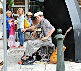 asheville dog buskers 2