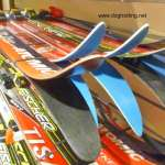 skis at dog-friendly Arrownhead Provincial Park, Ontario, Canada dogtrotting.net