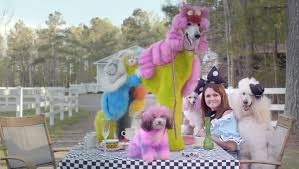 Well Groomed: Pope and her 'Mad Hatter' themed dogs