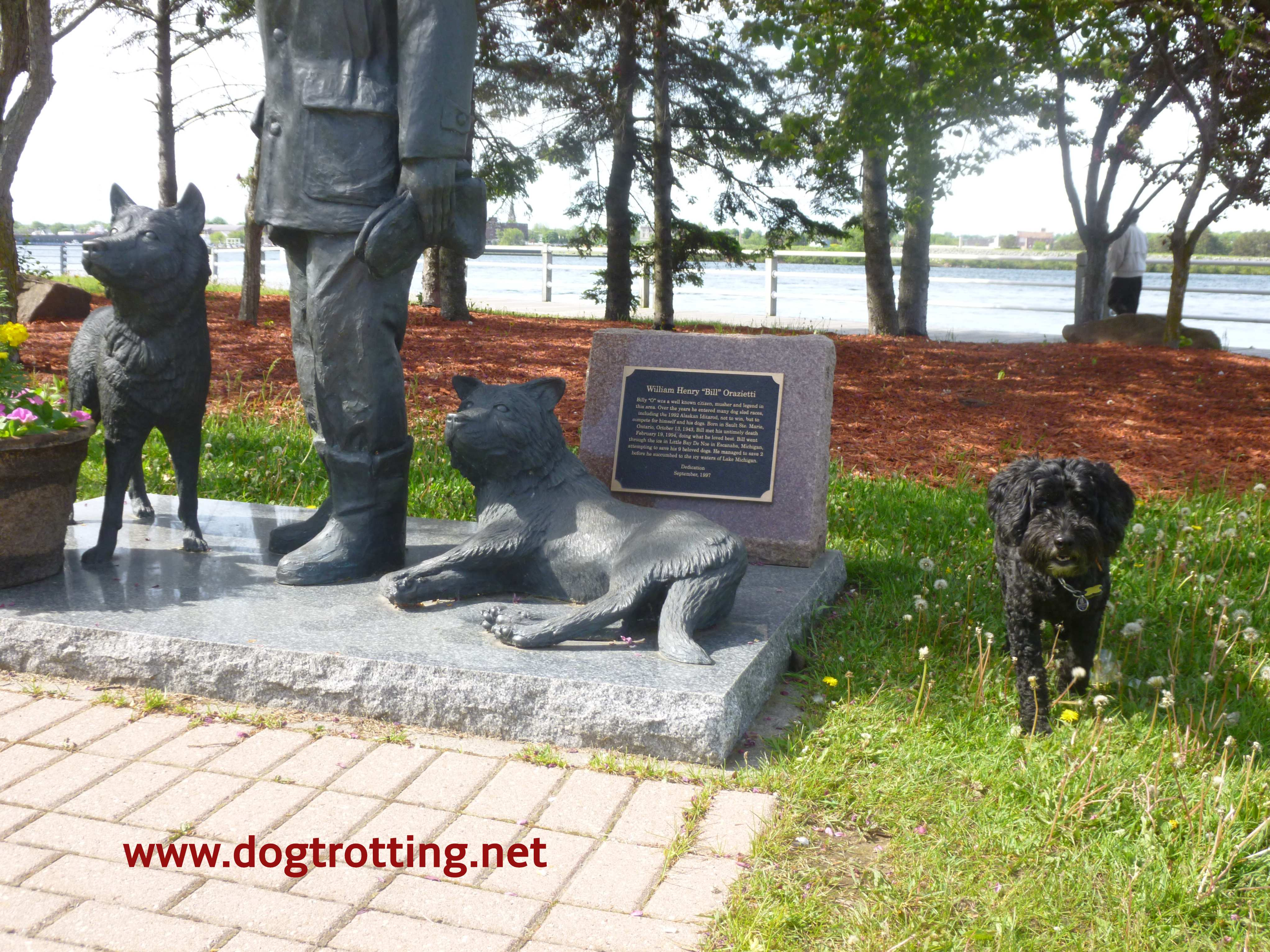 sculpture along boardwalk trail and dog in Sault Ste. Marie, Ontario