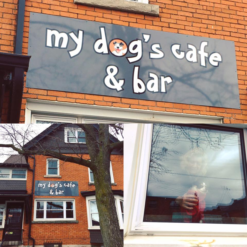 outside of my dog's cafe & bar in Hamilton, Ontario, Canada