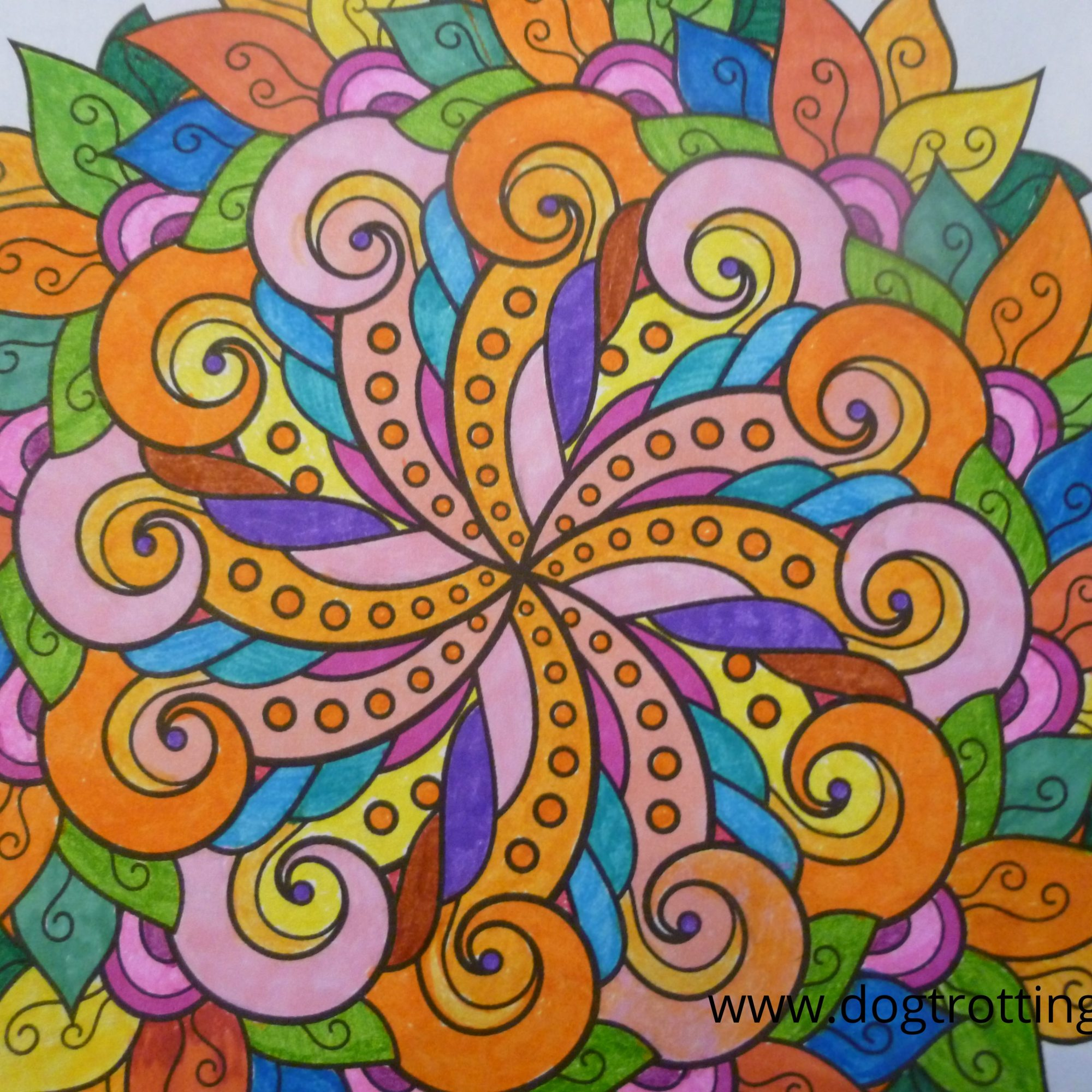 page from colouring book