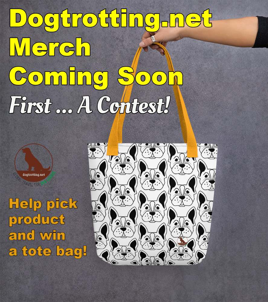 Contest: Vote! For Dog Merchandise to Win
