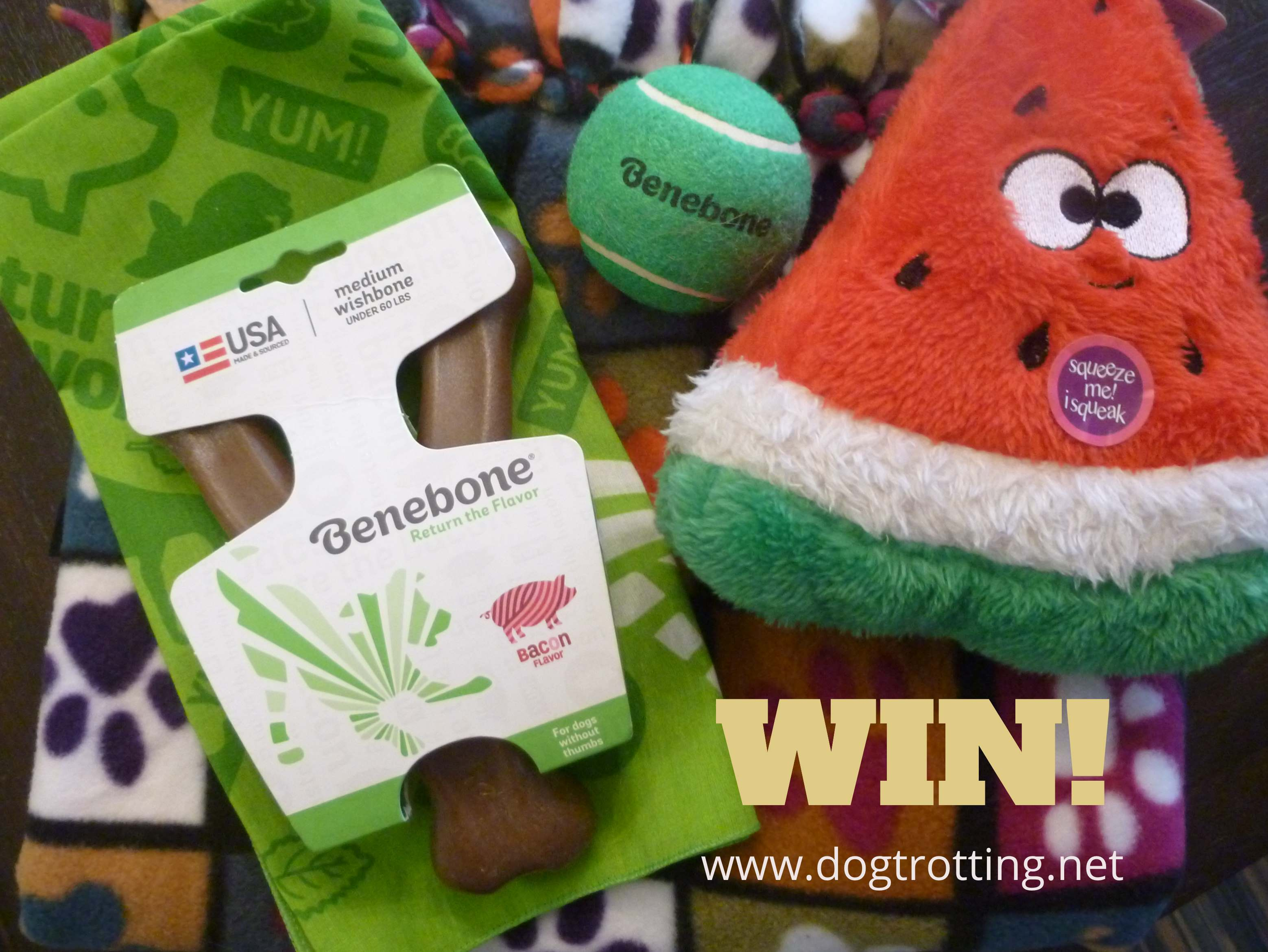 win Benebone prize pack - Benebone dog chew with dog toy, ball and blanket