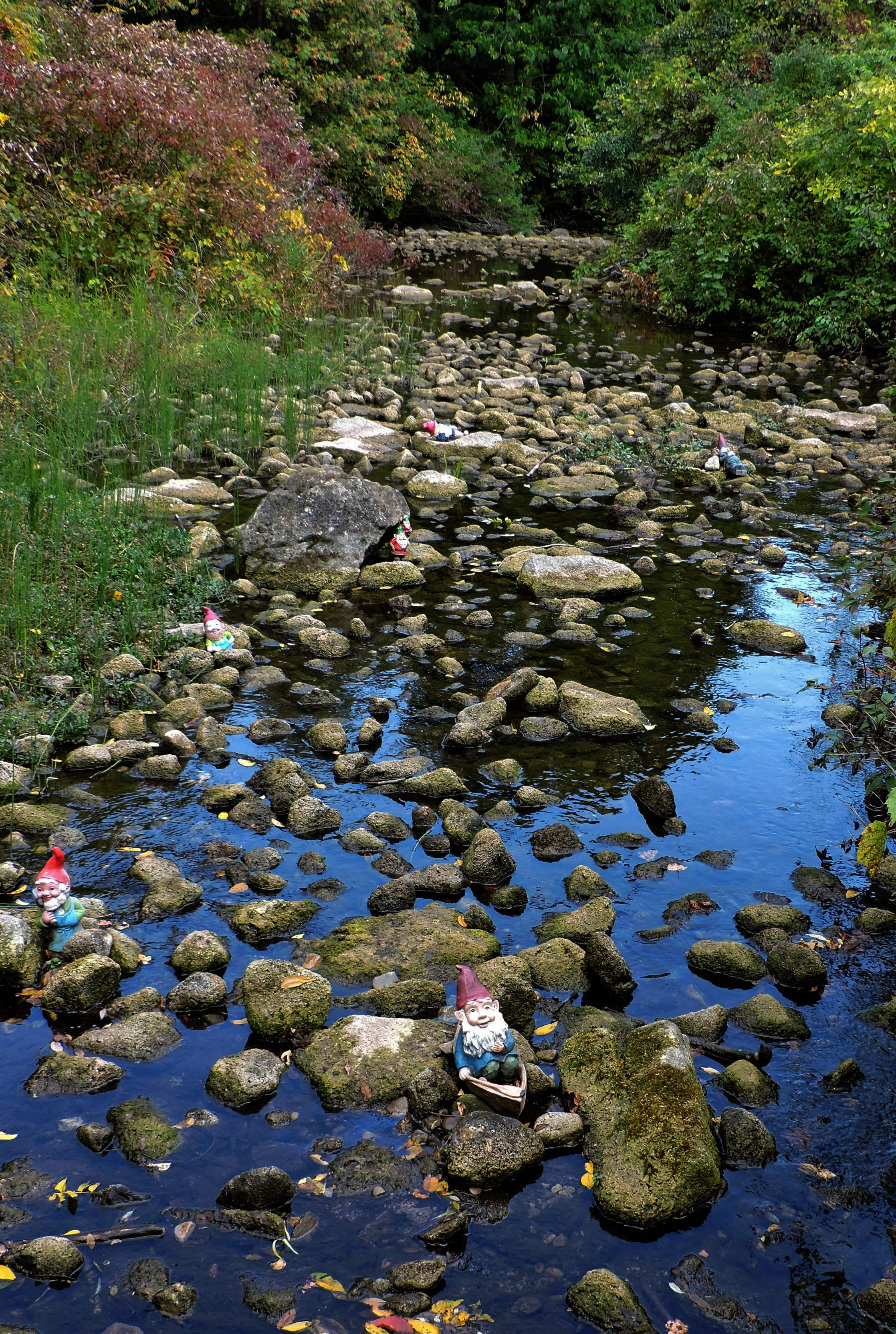 garden gnome in creek at dog friendly apple orchard