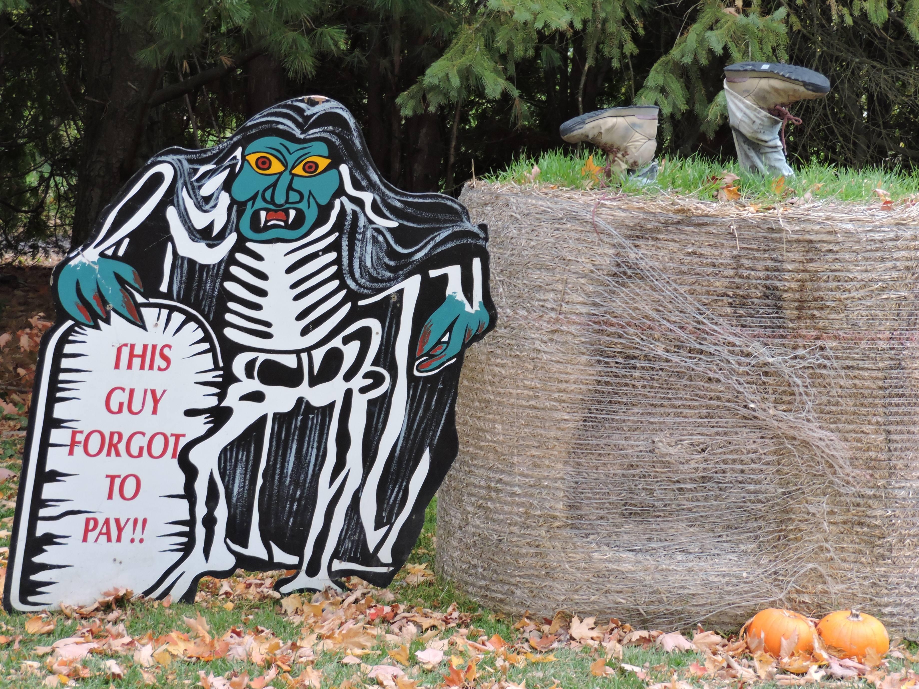 halloween skeleton display at Brantwood Farms Brantford Ontario