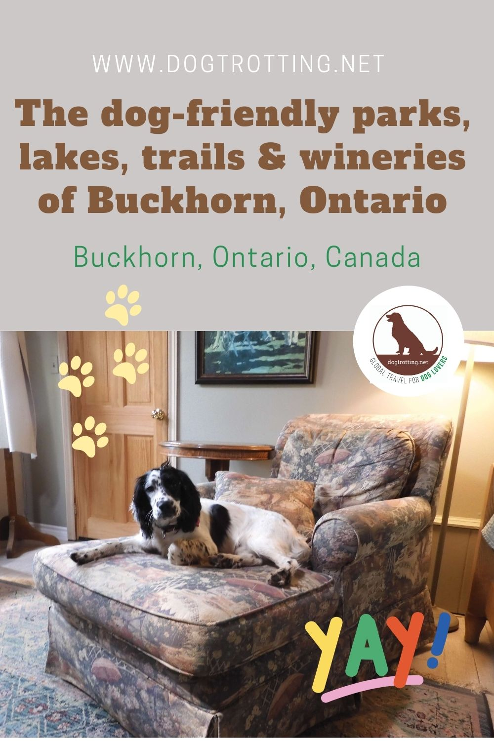 Discover Dog-friendly Buckhorn, Ontario: pet-friendly resort, winery, and provincial park perfect for pup travel