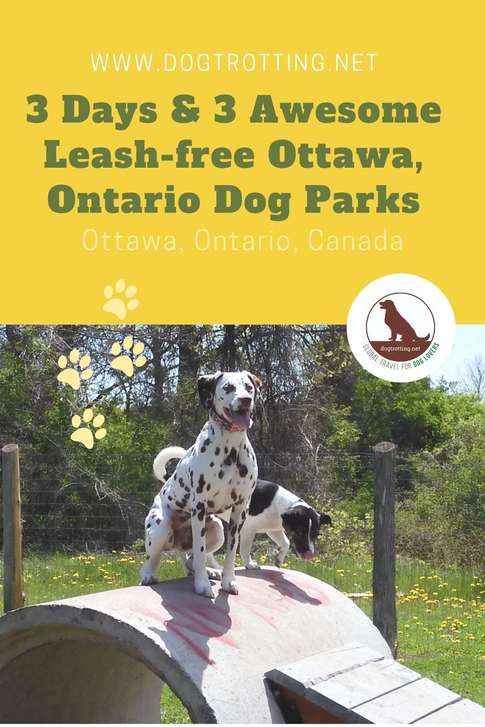 Explore Leash-free Ottawa, Ontario with your dog: One Puppy's Paradise is Two Pits