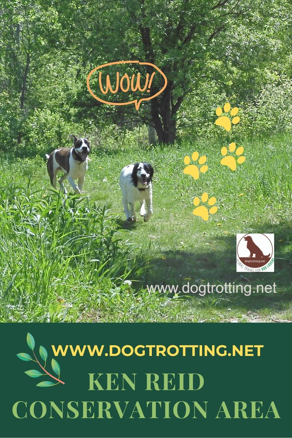 Howlers Corners: Take your dog to Ken Reid Conservation Area and let her run… leash free